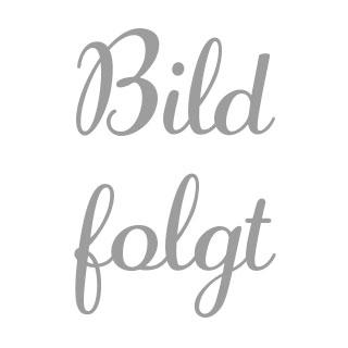 Förderverein Fußball SpVgg Erdweg e.V.
